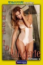 Lust in Lingerie Vol. 3 ebook by Mithras Imagicron