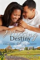 Missing Destiny (A Chandler County Novel) ebook by Traci Wooden-Carlisle