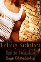 Holiday Bachelors - Book 1 ebook by Derek Adams