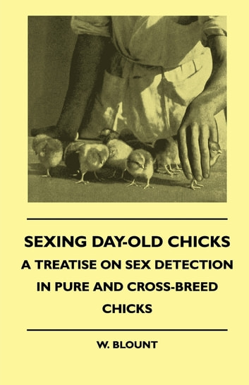 Sexing Day-Old Chicks - A Treatise on Sex Detection in Pure and Cross-Breed Chicks ebook by W. Blount