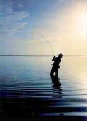Adventure Fly Fishing: The Best Fly Fishing Spots In The World ebook by Ed Kraisler