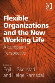 Flexible Organizations and the New Working Life - A European Perspective ebook by Helge Ramsdal,Egil J Skorstad