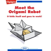 Meet the Origami Robot audiobook by Andy Boyles