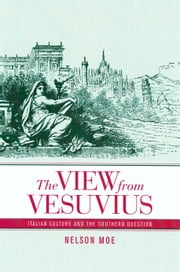 The View from Vesuvius: Italian Culture and the Southern Question ebook by Moe, Nelson