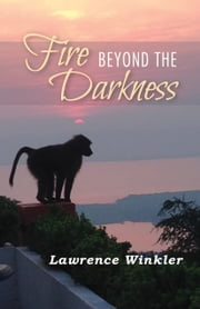 Fire Beyond the Darkness - A Metaphysical Journey ebook by lawrence winkler