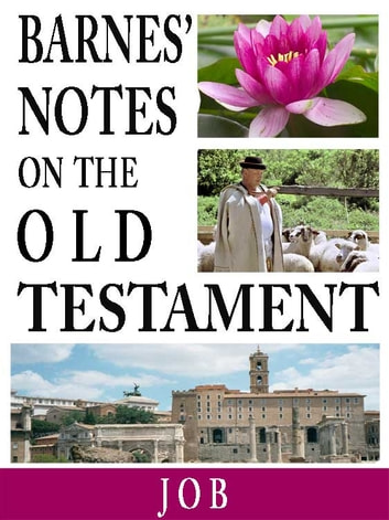 the old testaments book of job essay Old testament book of job in three pages this essay considers the book of job's message and meaning two sources are cited in the bibliography.