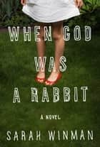 When God Was a Rabbit ebook by Sarah Winman