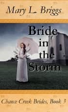 Bride in the Storm (Chance Creek Brides Book 3) ebook by Mary L. Briggs
