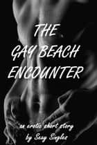The Gay Beach Encounter ebook by Sexy Singles