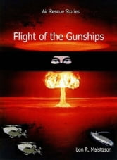 Flight of the Gunships ebook by Lon Maisttison