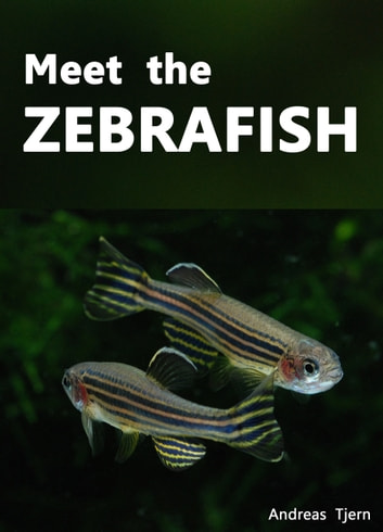 Meet the Zebrafish. A Short Guide to Keeping, Breeding and Understanding the Zebrafish (Danio rerio) in Your Home Aquarium ebook by Andreas Tjern