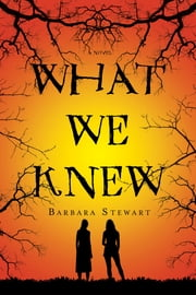 What We Knew - A Novel ebook by Barbara Stewart