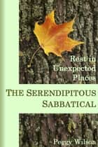 The Serendipitous Sabbatical: Rest in Unexpected Places ebook by Peggy Wilson