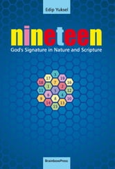 19 NINETEEN: God's Signature in Nature and Scripture ebook by Yuksel, Edip