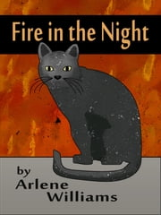 A Fire in the Night ebook by Arlene L. Williams