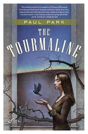 The Tourmaline ebook by Paul Park