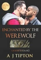 Enchanted by the Werewolf - Werewolves of Singer Valley, #2 ebook by AJ Tipton