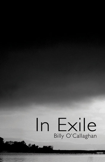 In Exile: Short Stories about Ireland ebook by Billy O'Callaghan