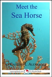 Meet the Sea Horse: A 15-Minute Book ebook by Caitlind L. Alexander