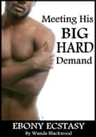 Meeting His BIG, HARD Demand ebook by Wanda Blackwood