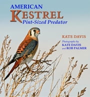 American Kestrel - Pint-Sized Predator ebook by Kate Davis,Rob Palmer