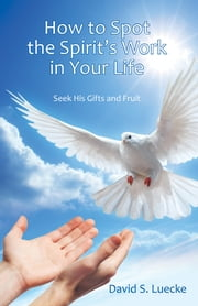 How to Spot the Spirit's Work in Your Life - Seek His Gifts and Fruit ebook by David S. Luecke