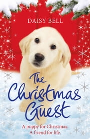 The Christmas Guest - A heartwarming tale you won't want to put down ebook by Daisy Bell