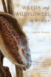 Weeds and Wildflowers in Winter ebook by Lauren Brown