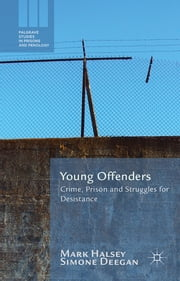 Young Offenders - Crime, Prison and Struggles for Desistance ebook by Professor Mark Halsey,Simone Deegan