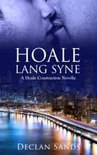 Hoale Lang Syne ebook by Declan Sands