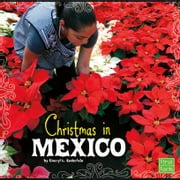 Christmas in Mexico audiobook by Cheryl Enderlein