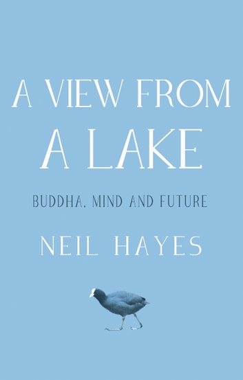 A View From A Lake - Buddha, Mind and Future ebook by Neil Hayes