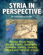 Syria in Perspective: An Orientation Guide - History, Assad Years, Recent Events, Geography, Economy, Society, Security, Military and Terrorist Groups ebook by Progressive Management