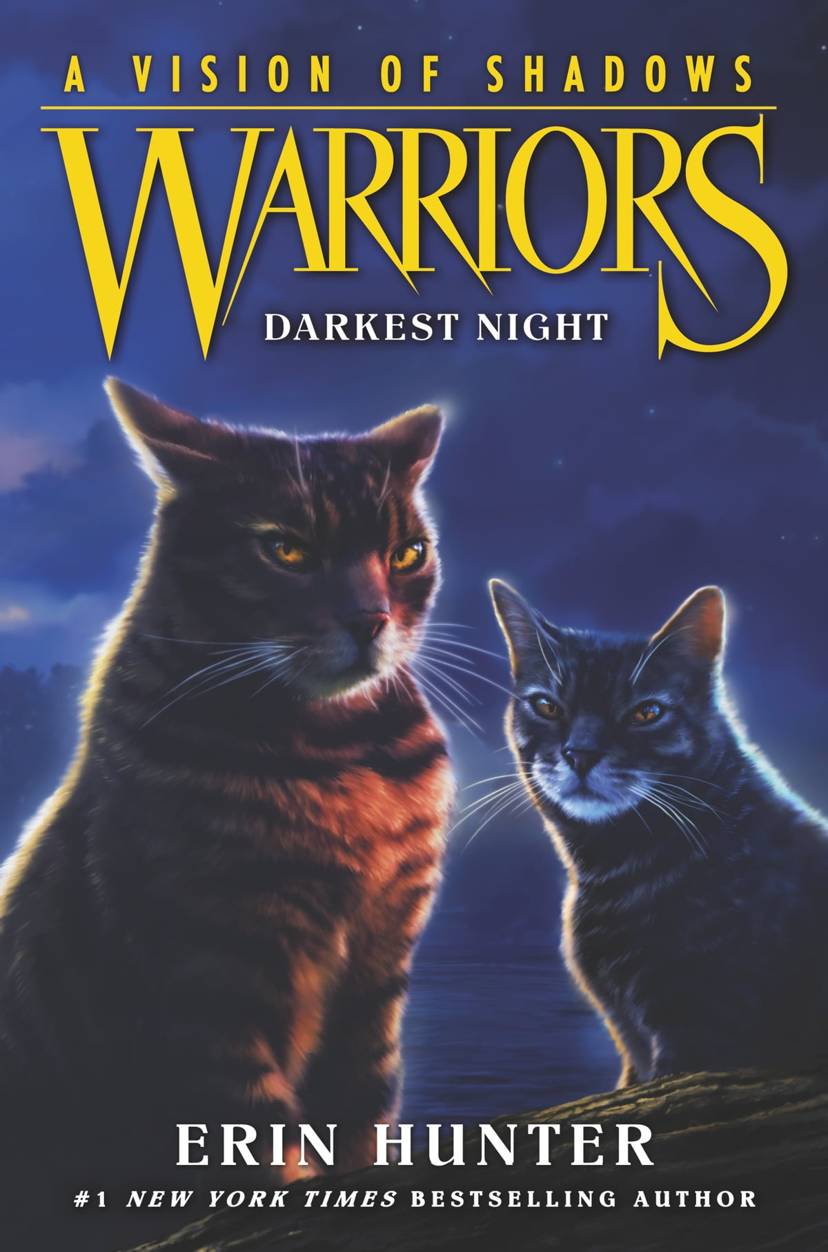 Warriors a vision of shadows 4 darkest night ebook by erin warriors a vision of shadows 4 darkest night ebook by erin hunter 9780062386526 rakuten kobo fandeluxe Ebook collections