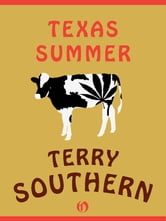 Texas Summer ebook by Terry Southern