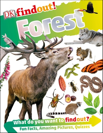 DKfindout! Forest ebook by DK