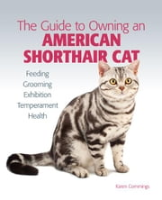 Guide to Owning an American Shorthair Cat ebook by Karen Commings