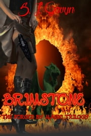 Brimstone: Book One of the Forged by Magic Trilogy ebook by S. L. Gavyn