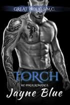Torch ebook by Jayne Blue