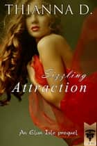 Sizzling Attraction ebook by Thianna D