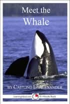 Meet the Whale: A 15-Minute Book ebook by Caitlind L. Alexander