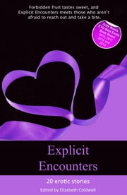 Explicit Encounters - Sex When You Shouldn't ebook by Michael Bracken, Giselle Renarde, Penelope Friday,...