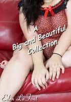 A Big and Beautiful Collection ebook by