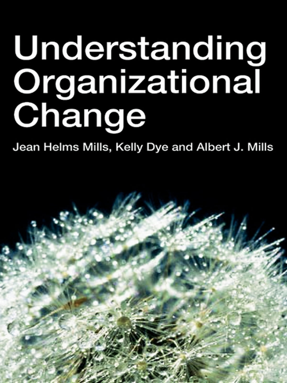 "multiple perspective approach in understanding organisational phenomena Approaches to organization theory lars groth ""large organization is loose organization nay, it would be almost as true to say that organization is always disorganization""  understanding of individual action and interaction, based on the individuals."
