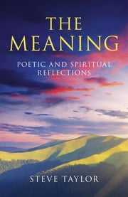 The Meaning ebook by Steve Taylor