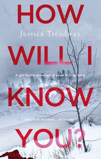 How Will I Know You? ebook by Jessica Treadway