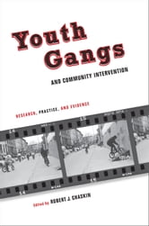 Youth Gangs and Community Intervention - Research, Practice, and Evidence ebook by