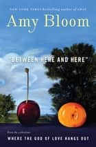 Between Here and Here (short story) ebook by Amy Bloom