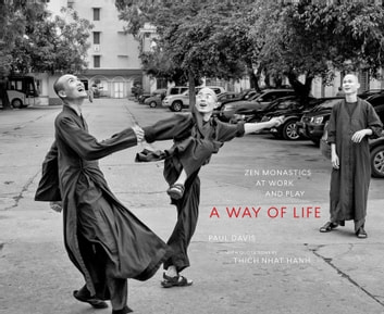 A Way of Life - Zen Monastics at Work and at Play ebook by