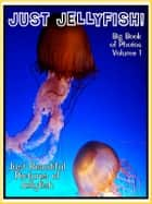 Just Jellyfish Photos! Big Book of Jellyfish Photographs & Pictures Vol. 1 ebook by Big Book of Photos
